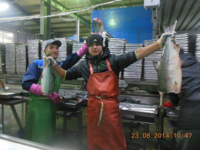 вакансии рыбак прибрежного лова сахалин
