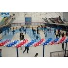 Укрытие хоккейного корта
