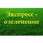 Экспресс-озеленение