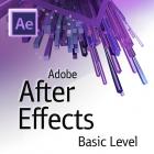 Курсы видео дизайна в Adobe After Effect