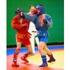 спорт клубы и секции