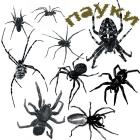 Клещей, комаров, пауков уничтожение
