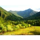 Красивейшее место для отдыха в Алтае