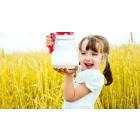 Молоко, кефир, ряженка, йогурты оптом с молзавода Ростов