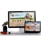 Дизайн сайтов.