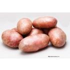 Качественный семенной картофель