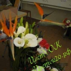 Салон цветов.
