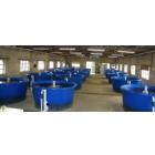 Универсальный рыбоводный модуль для осетра 5 тонн в год