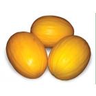 Семена дыни АГАСИ F1 фирмы Китано
