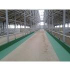 Обеспыливание и восстановление бетонных полов