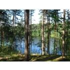 """Участок """"Озеро Тригорское"""" 12,42 га. Сельхоз. Выборгский район."""