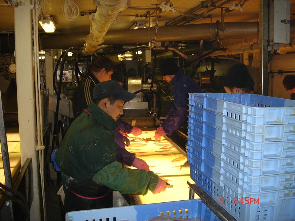 вакансии в рыболовных компаниях г владивосток