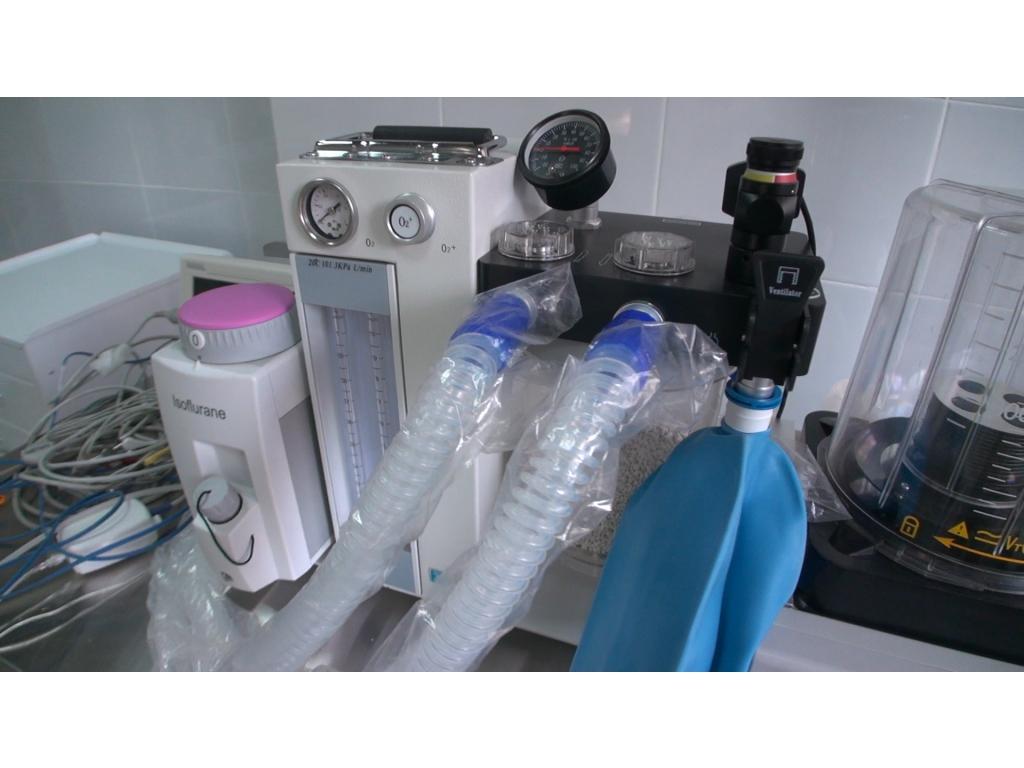 4 стоматологическая поликлиника минск платное отделение